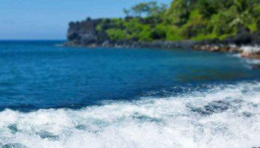 1xBet разыгрывает поездку на Гавайи